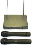 EnBao LX-1000 - Двуканальная VHF система