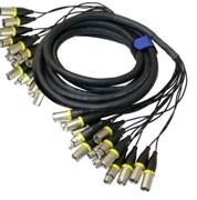 AVC Link Snake 16XX/60 - Аудио мультикор