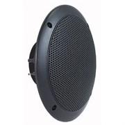Visaton FR 16 WP/4  (black) - Влагозащищенный громкоговоритель