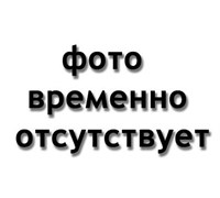 AVC Link CABLE-934/0.15 - Кабель видео (BNC-BNC), 0,15м